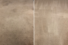 carpet-cleaning-before-and-after-1